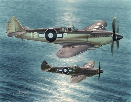 Supermarine Seafire XV Far East 1/48