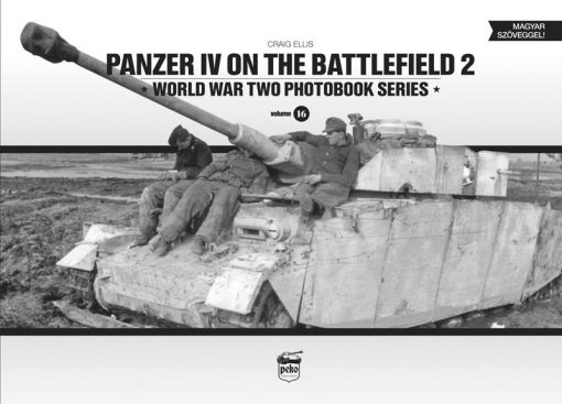 Panzer IV on the Battlefield 2 (Vol.16)