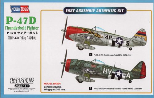 Republic P-47D Thunderbolt 1/48